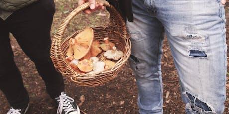 Guided mushroom forage tickets