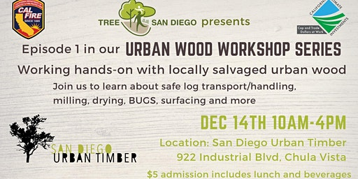 Episode 1: Working with Urban Wood