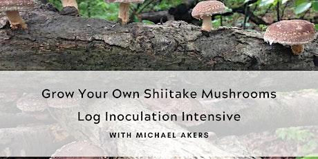 Grow Your Own Shiitake Mushrooms tickets