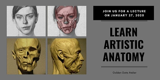 Learn Artistic Anatomy - Muscles of the Head