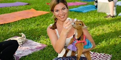 Goat Yoga Katy - Mimosas or Sangria's!!! tickets