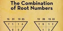 Numerology & Wellness for Year 2020