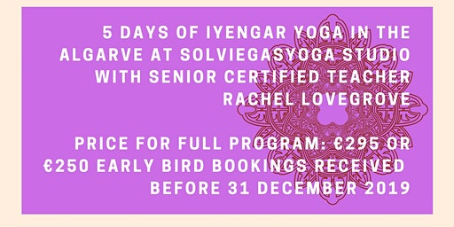 February Iyengar Yoga Intensive (non-residential)