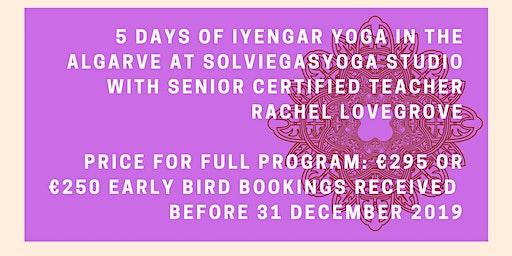 February Iyengar Yoga Intensive (non-residential)