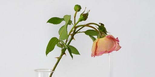 Bottle the fragrant language of a rose