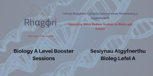 AS Bioleg/AS Biology Booster Session