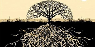 Roots+-An+Introduction+to+Systemic+%26+Family+C