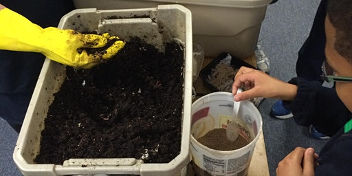 Make and Take: Composting with Worms