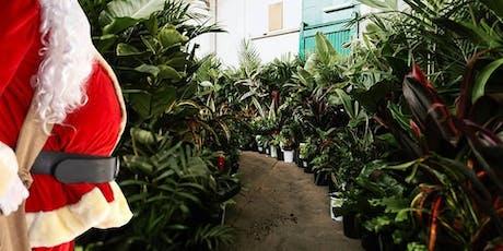 Adelaide - Huge Indoor Plant Warehouse Sale - Christmas Bonanza tickets