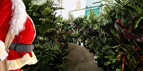 Adelaide - Huge Indoor Plant Warehouse Sale - Christmas Bonanza tickets