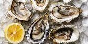 Champagne and Oyster Tasting  at Aurora Cooks! 5:30pm