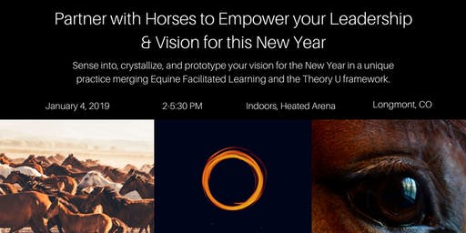 Partner with Horses to Empower your Leadership & Vision for this New Year