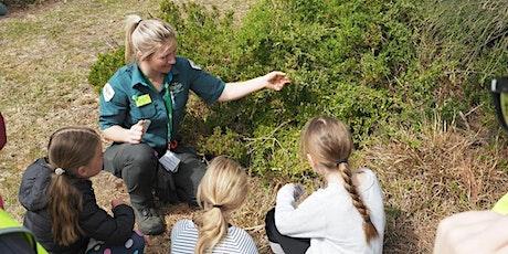 Junior Rangers Flora Explorer - Grampians National Park  tickets