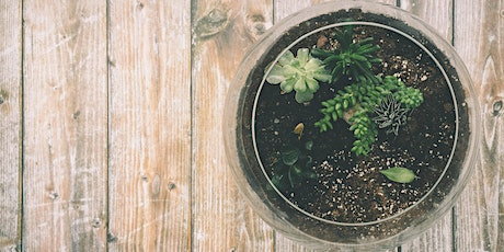 Synergy Youth Centre - Terrarium Workshop tickets