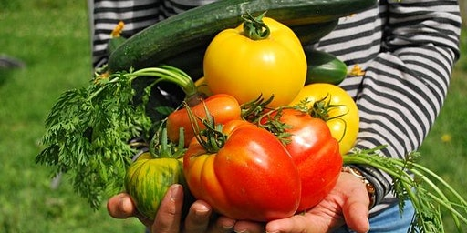 Organic Vegetable Gardening - Adult Event
