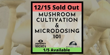 SOLD OUT Mushroom Cultivation & Microdosing 101 tickets