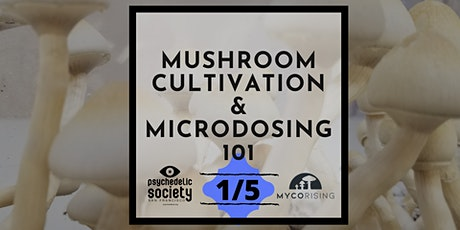 (SOLD OUT)1/5 Mushroom Cultivation & Microdosing tickets