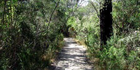 The Spirit Tracks Crib Point Paranormal Investigation
