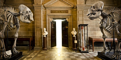 Anatomical Museum - Creative Writing Workshop tickets