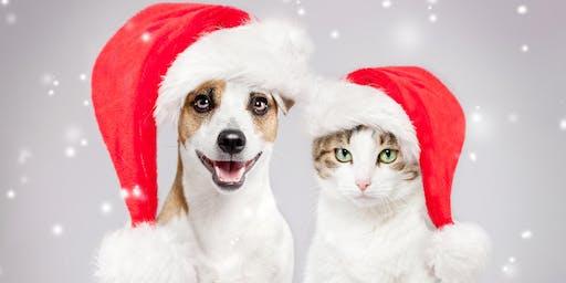 Pet Photos With Santa Fundraiser