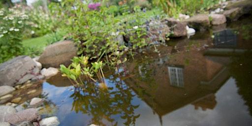Pond Creation Workshop