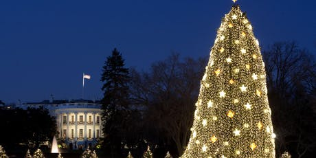 Limousine, Luxury and Lights: Holiday Limo Tour of the Festive Lights of DC tickets