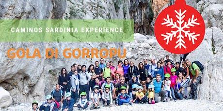 Escursione verso il canyon più spettacolare d'Europa: la Gola di Gorropu! biglietti