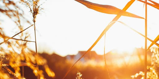 Spring self-care day retreat