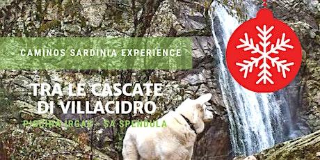 Family hiking:  passeggiata tra le cascate di Villacidro! biglietti