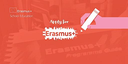 Erasmus+ Schools KA229 Application Workshop, Blackrock Education Centre