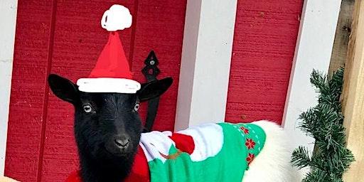 Goat Yoga Nashville- Happy Holiday's Class/Nolensville Cheer Fundraiser
