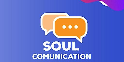 SOUL COMUNICATION - Treinamento de Oratória