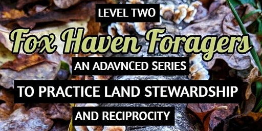 Level 2 Foragers: Advanced Land Stewardship & Reciprocity