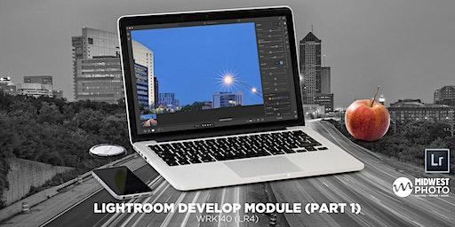 Lightroom Develop Module (Part 1)-WRK130 (LR04)