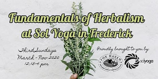 Fundamentals of Herbalism Series at Sol Yoga