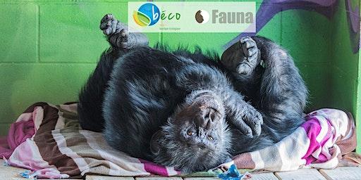 Fauna Nature & Wellness Retreat / Retraite Fauna Nature & Bien-Être