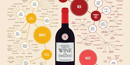 Wine 101: The Basics