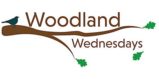 Woodland Wednesdays (Lake):  Increase Your Wealth and Woodland Health