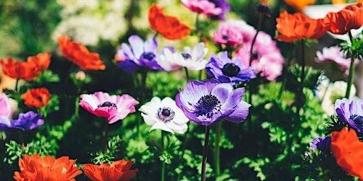Free Seminar & Free Consultation: How to Design Your Garden
