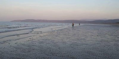Anglesey Coastal Foraging Day