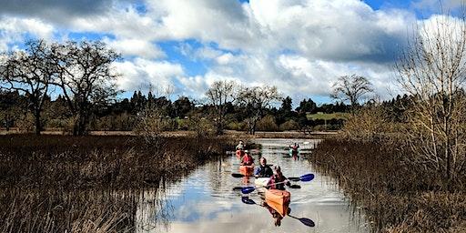 Flash Kayaking - Morning Wetlands Tour