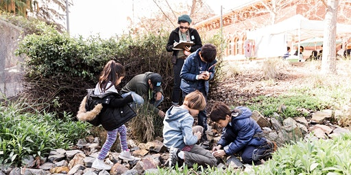 Nature Bioblitz  with the Natural History Museum at Transfiguration Church