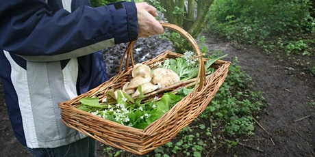 Buckinghamshire Early Spring Wild Food Forage tickets