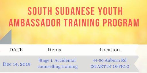 South Sudanese Youth Ambassador Training
