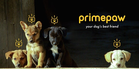 Prime Paw Puppy Social (Pups 9-16 Weeks) tickets