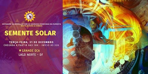 Semente Solar