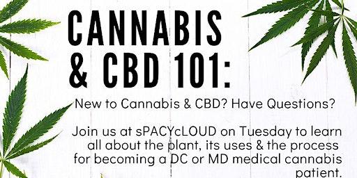 Cannabis & CBD 101
