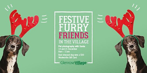 Glenrose Village - Pet Photography
