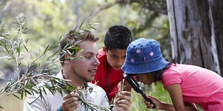 Junior Ranger Box Ironbark Discovery - Deep Lead Nature Conservation Reserve tickets