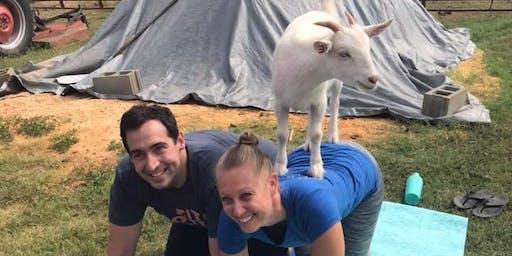 Carolina Goat Yoga Class: January 11th